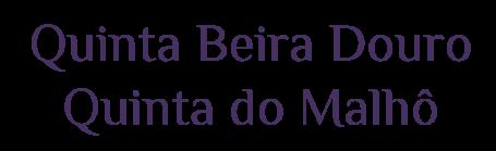 Quinta-Beira-Douro--Quinta-do-Malhô